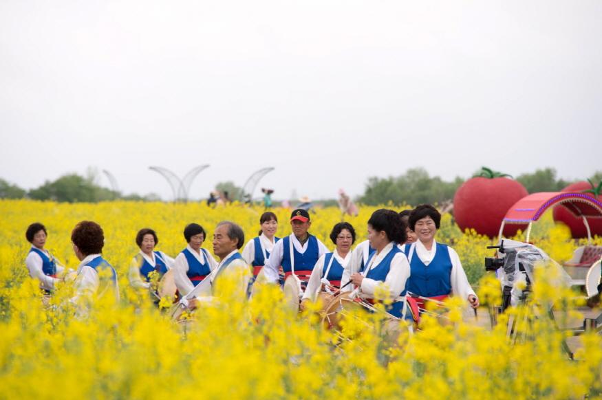 [크기변환]1. 2019 부여세도 방울토마토 유채꽃축제 장면  (2).jpg